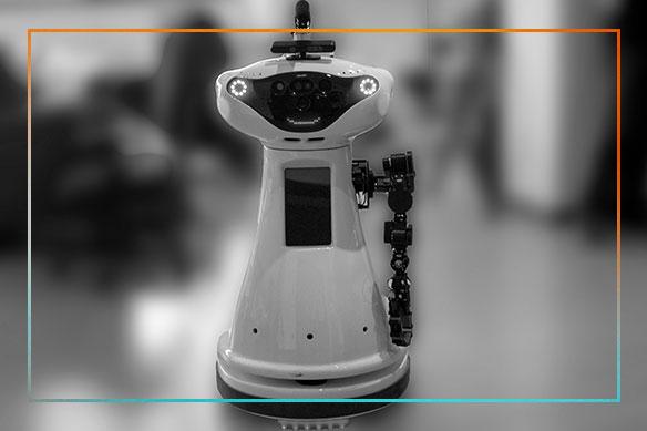 rockin-robot-image